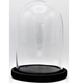 . Black glass dome large