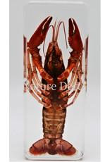 . Lobster in resin