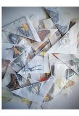 . Ongeprepareerde vlinders divers 20 stuks