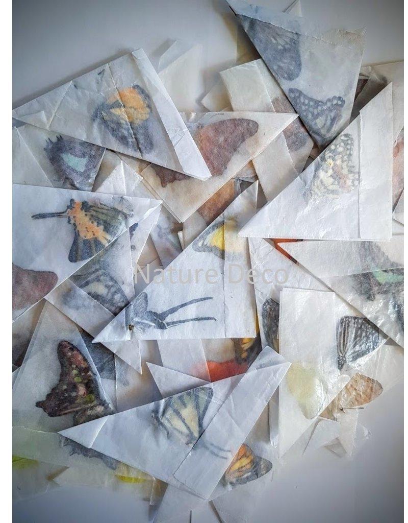 . Ongeprepareerde vlinders divers 30 stuks