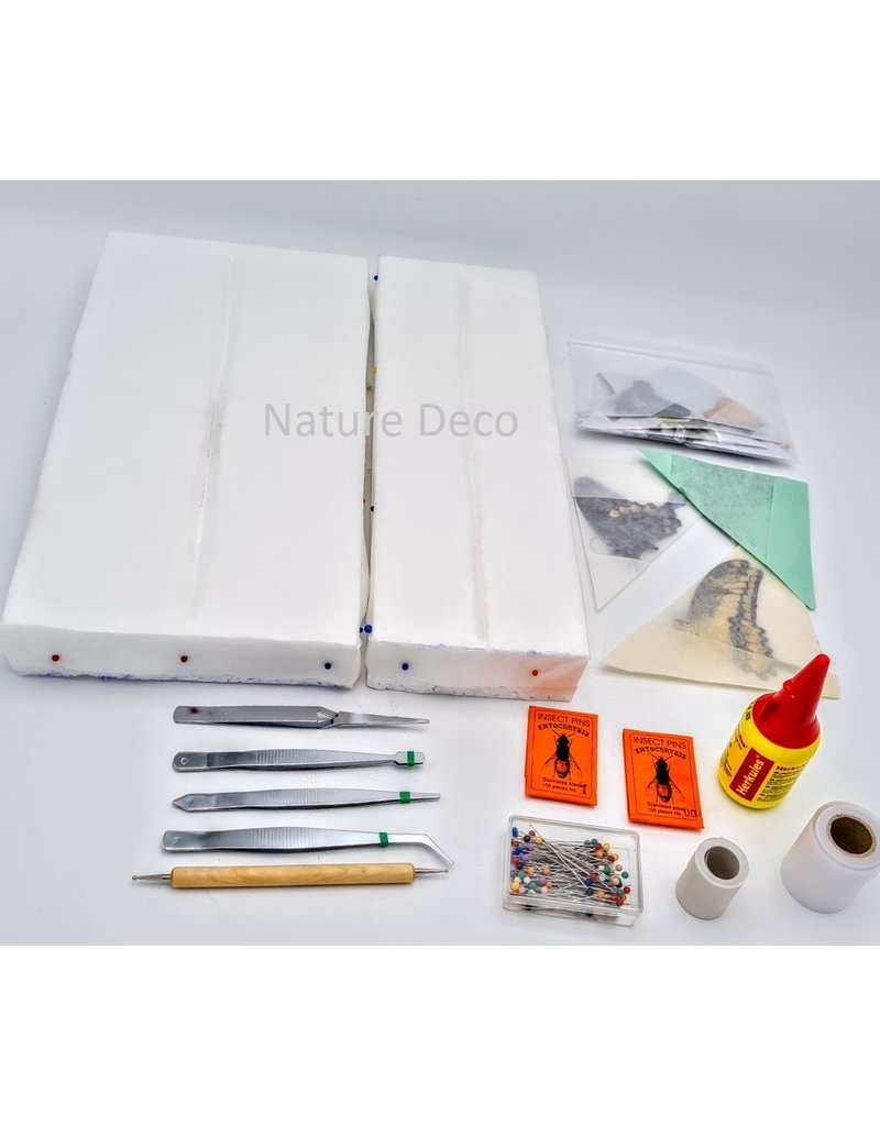 Nature Deco Starter set butterfly mounting DELUXE