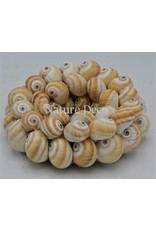 . Shell wreath Mattugan 15 x 15 cm