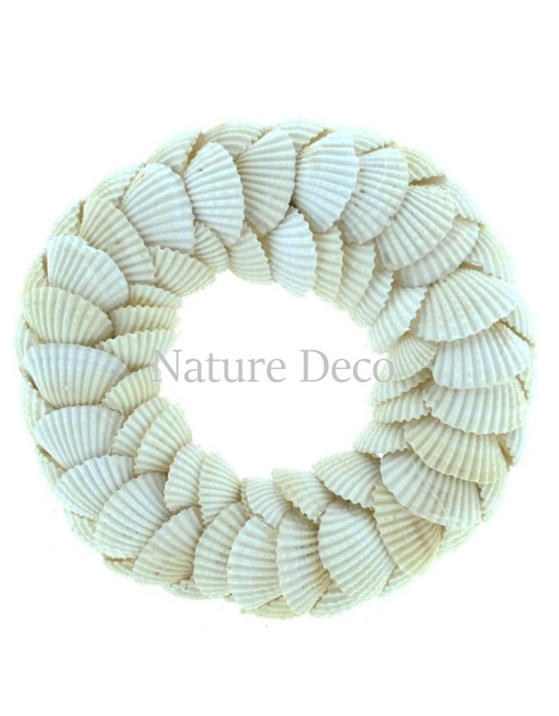 . Shell wreath Chippy 15 x 15cm