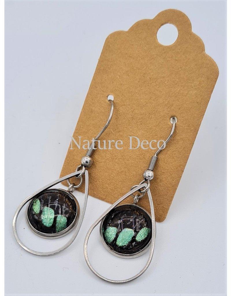 Nature Deco Oorbel druppel Sarpedon Graphium
