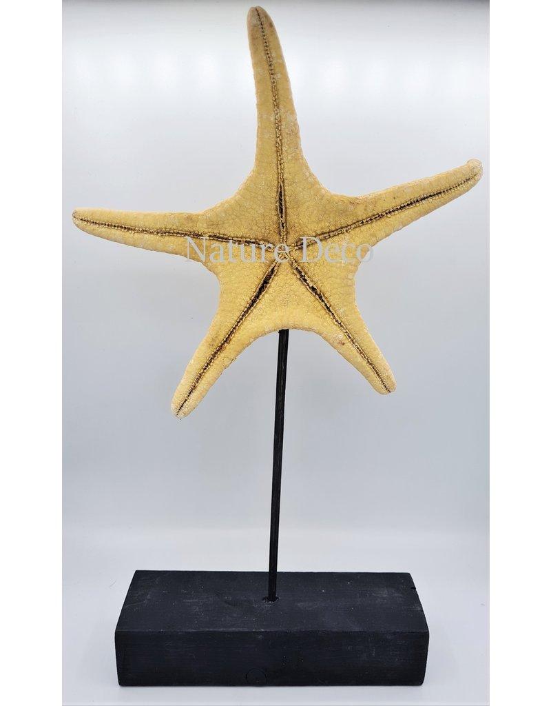 Nature Deco Starfish XXL on stand