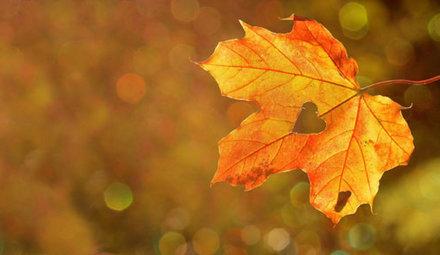 Prepare your skin for autumn