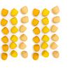 Grapat - Mandala Bijenkorfjes (36 Stuks)