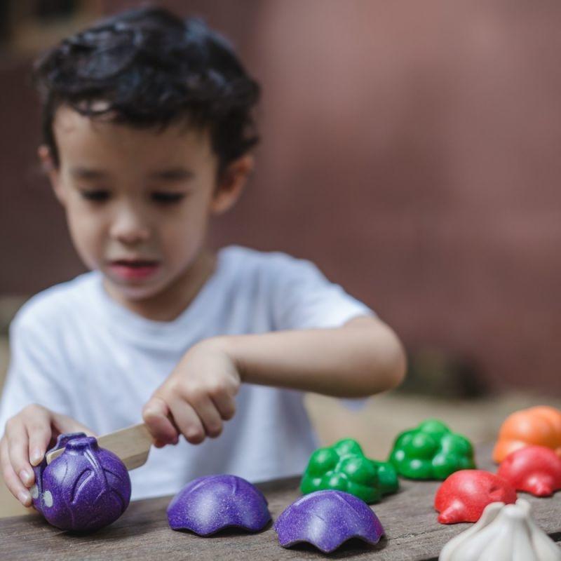 Plan Toys Houten Set - Groenten met Mes