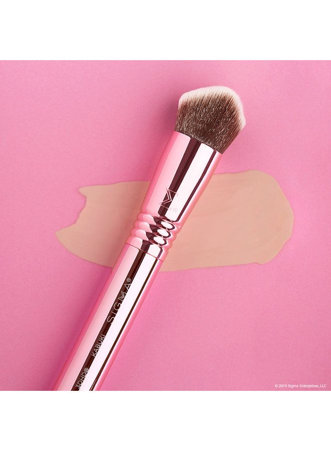 Sigma 3DHD Perfect Complexion Set