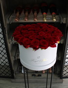 Le Rouge - White Flowerbox