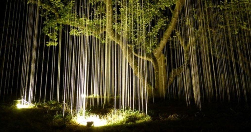 Kunstenaar Bart Ensing gebruikt 10W LED bouwlampen voor het verlichten van zijn kunstwerk