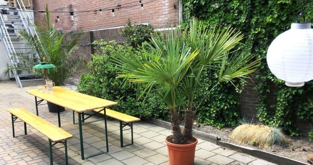 Specilights Prikkabel voor een gezellige tuin - Travelgoodies geeft advies