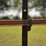 Gallagher  200 m/20 mm Gallagher Weidezaunband TurboLine (terra)
