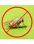Horizont Elektrische Fliegenfalle/Insektenvernichter INSECT-O-KILL 30 plus - 2 x 15 Watt