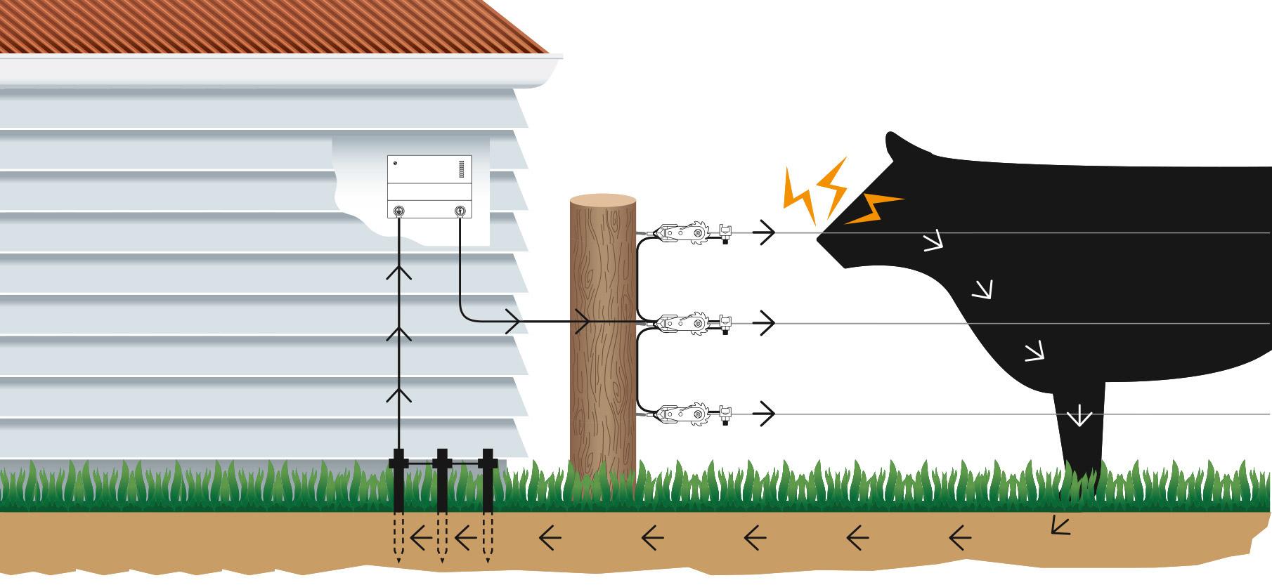 Wie funktioniert ein elektrischer Weidezaun?