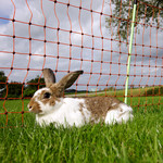 Gallagher  Gallagher Kaninchennetz/Hobbynetz - 50 m / 65 cm Einzelspitze (rot)
