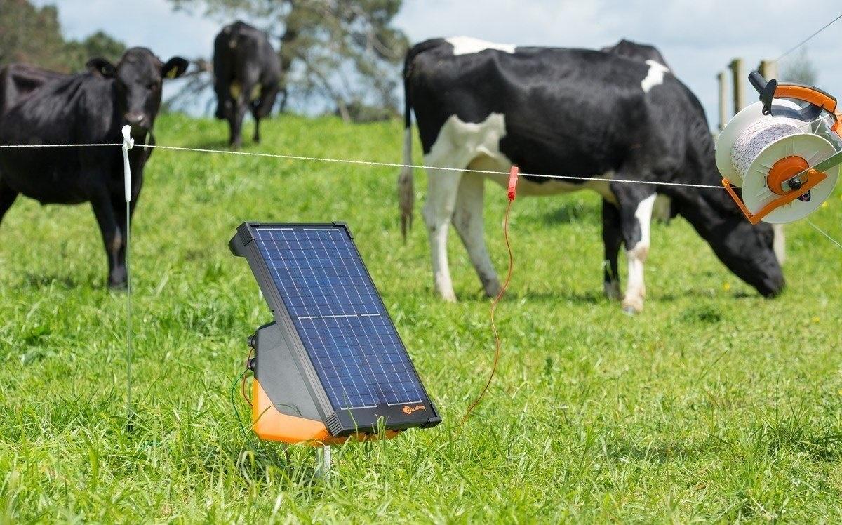 So lagern Sie Solar-Weidezaungeräte richtig
