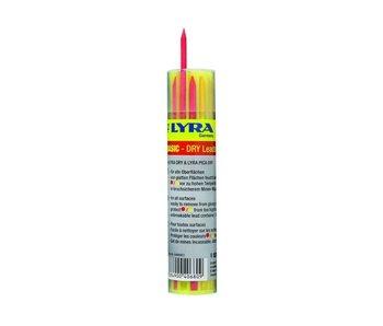 Lyra Dry Rot