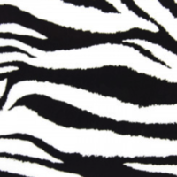 Fashion flexfolie zebra