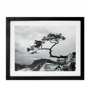 Riverdale Painting Landscape black 40x50cm