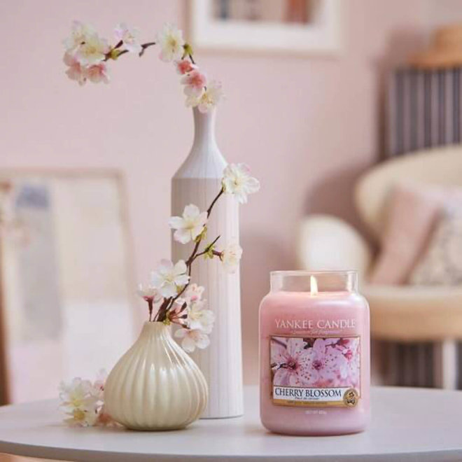 Kirschblüten-großes Glas