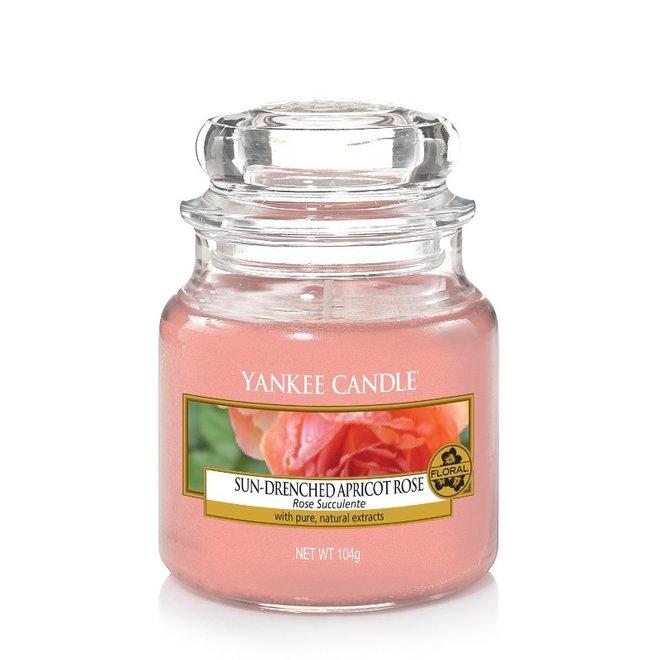 Sonnengetränkte Aprikosenrose Kleines Glas