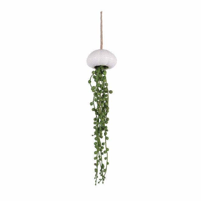 Coquille avec des feuilles de ficus artificiel