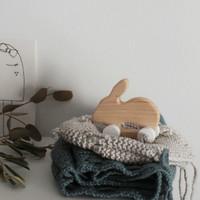 Pinch Toys | Handgemaakt houten speelgoed Konijn