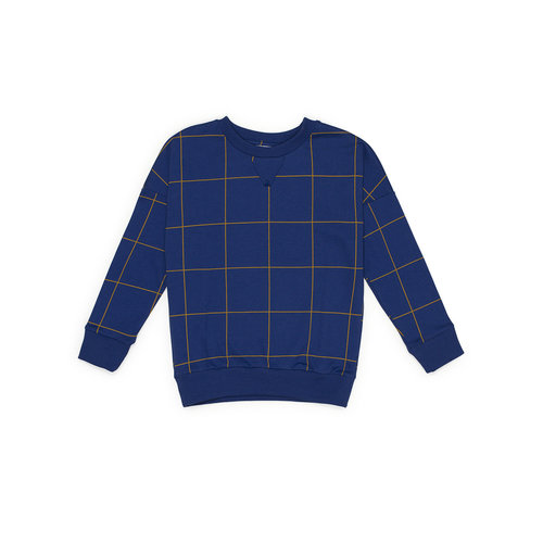 Say Please Sweater blauw met ruitje