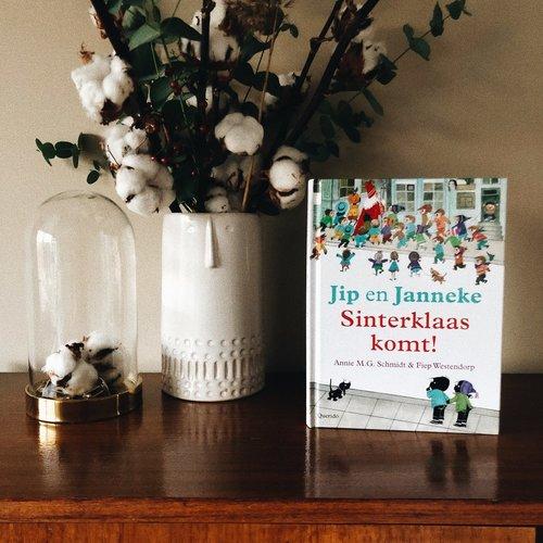 Boeken Jip en Janneke: Sinterklaas komt!