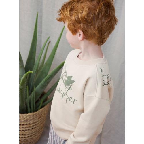 Ammehoela Ammehoela | AM.Rocky.10 | Sweater grasshopper