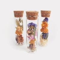 Wild Flowers | Droogbloemen Wish Bottle Mini