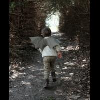 Fabelab | Draken vleugels