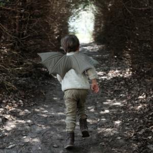Fabelab Fabelab | Draken vleugels