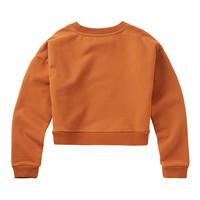 Mingo | Cropped Sweater Dark Ginger | Oranje cropped sweater