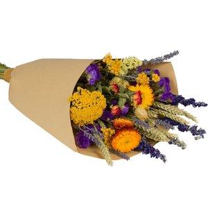 Overig Wild Flowers | Droogbloemen Veldboeket M | Orange