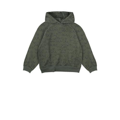 Ammehoela Ammehoela | Ernest.03 | Hooded sweater groen