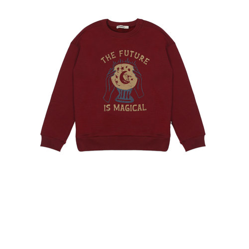Ammehoela Ammehoela | Rocky.29 | Sweater Future is Magical