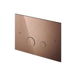 Hotbath  Cobber Bedieningspaneel geschikt voor Geberit UP320 - Living Colours vormen een Poetsbaar patina CBA320NI Glans Nikkel