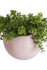 Presenttime Wall Plant Pot rosa