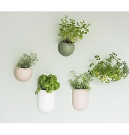 Presenttime Wall Plant Pot weiß ovale Form