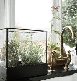 House Doctor Vitrine Plant