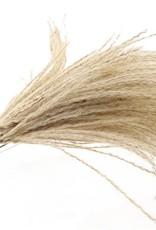 Silver Grass 10er Bund