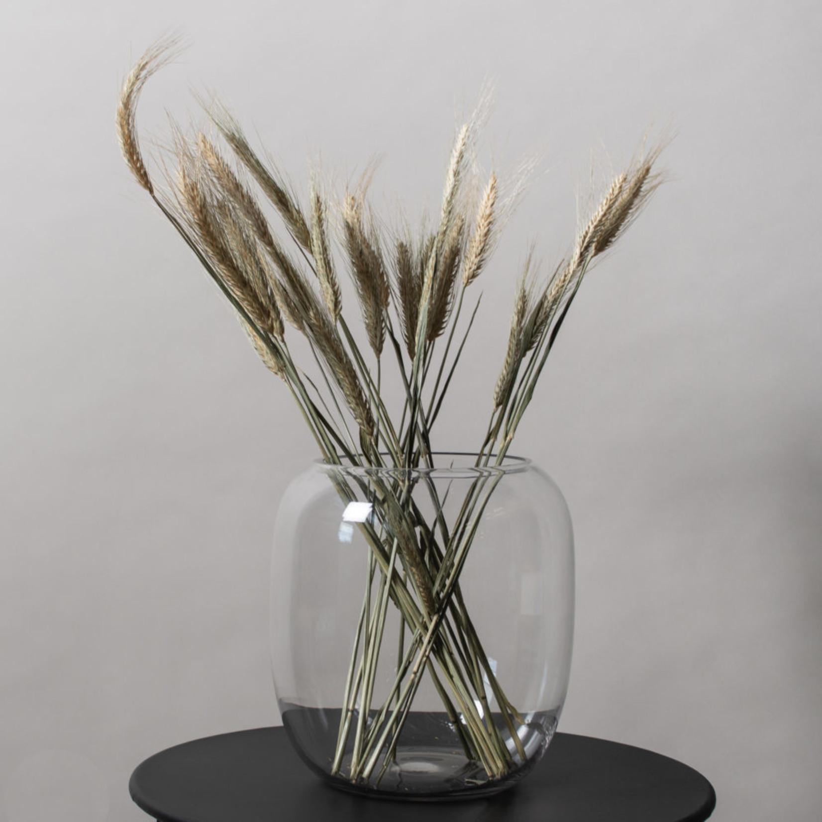 Storefactory  Vase Forshem