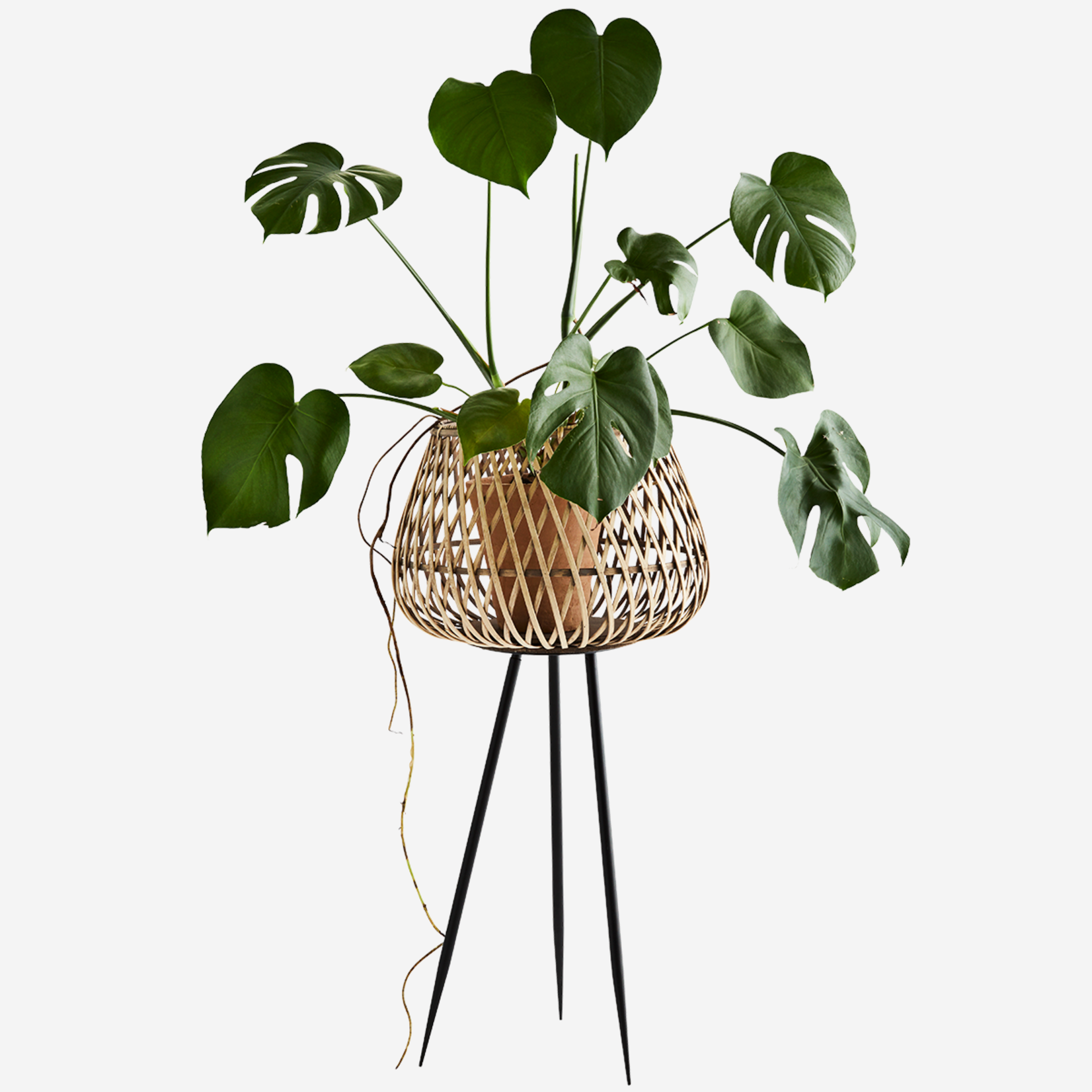 Madam Stoltz Bamboo Flower Stand