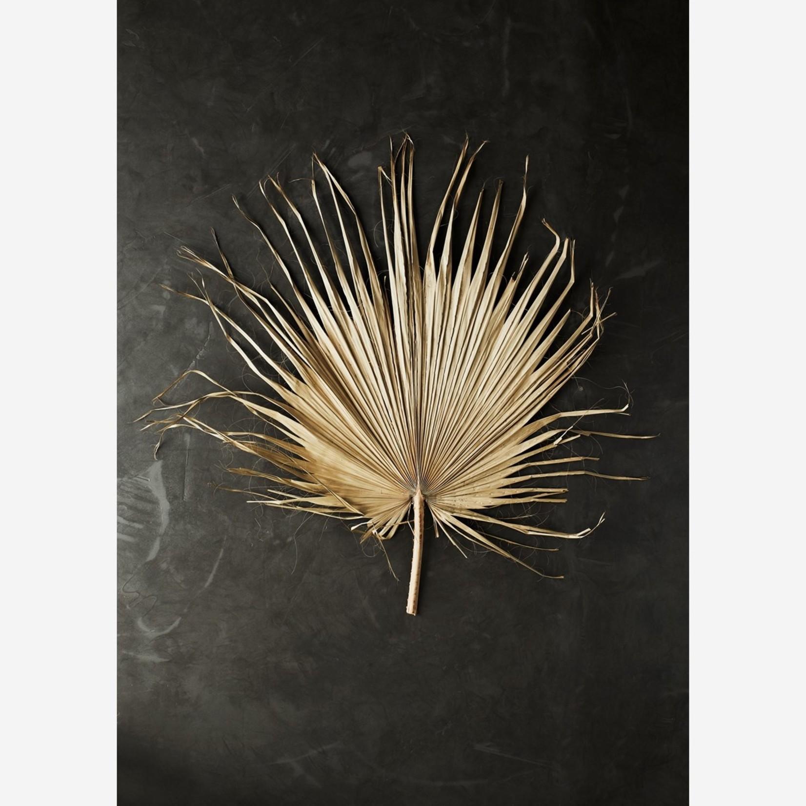 Madam Stoltz Palm Leaf