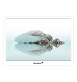 DanzArte Postcard Swan