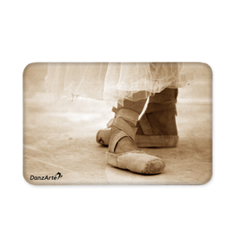 DanzArte Magnet Pointe Shoes Sepia