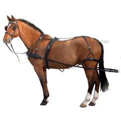 Kieffer Combi harness Single horse 32 mm traces