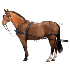 Kieffer LD combi harness single horse 32 mm
